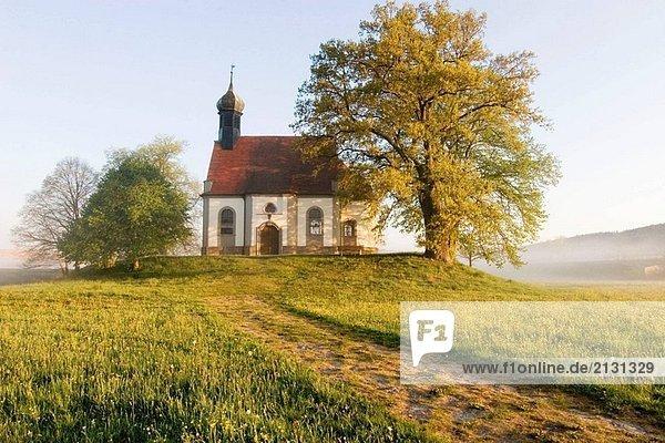Kleine Kapelle auf dem Hügel am nebligen Morgen im Frühjahr. Oberfranken  Bayern / Deutschland