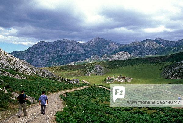 Landschaft in der Nähe von der Alm Belbin. Picos de Europa Berge. Asturien  Spanien