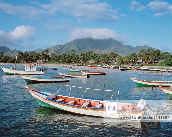 Fischereiflotte. El Tirano (auch Puerto Fermin genannt). Isla Margarita. Nueva Esparta. Venezuela.