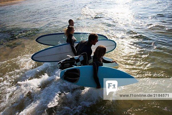 Vier Leute  die Surfbretter ins Wasser tragen  lachend.