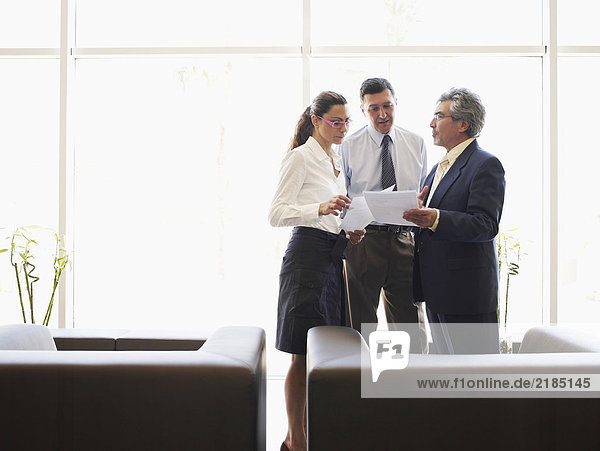 Zwei Geschäftsmänner und -frauen diskutieren über Akten im Amt