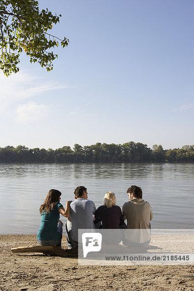 Vier Freunde sitzen auf einem Baumstamm am See.