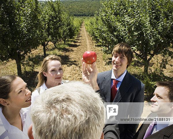 Mann zeigt Apfel zur Gruppe im Obstgarten.