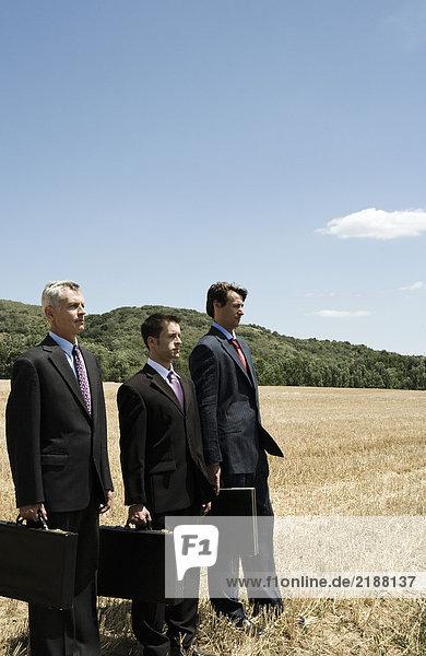 Drei Geschäftsleute stehen in einer Reihe im Feld.