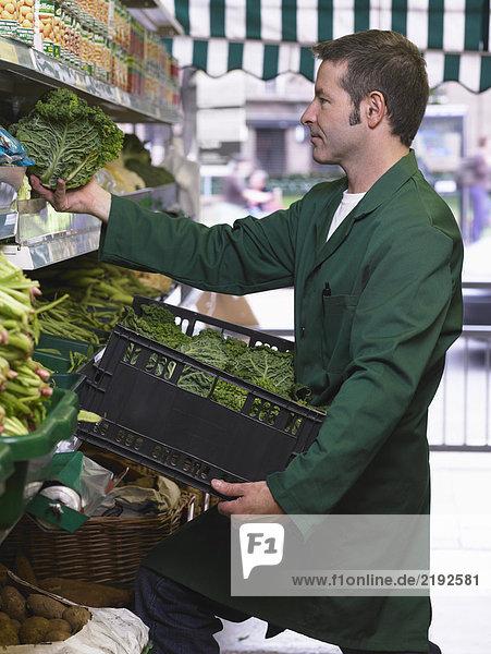 Grocer filling shelves with vegetables