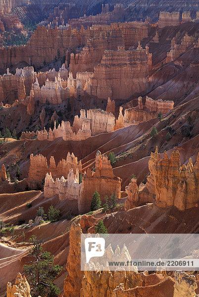 Utah  Bryce Canyon Natl.Park
