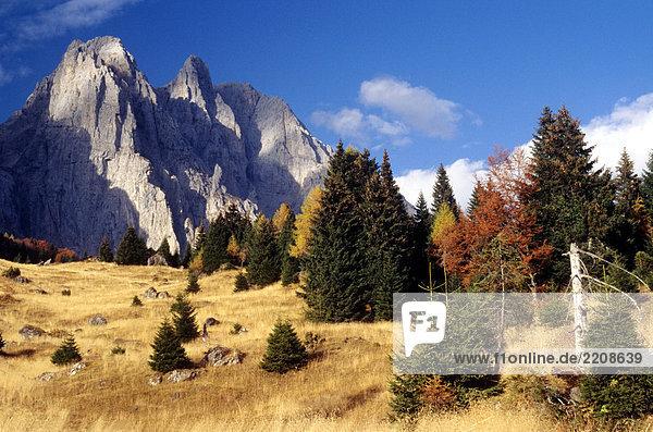 Trentino-Südtirol  Dolomiten  Pale di San Martino Trentino-Südtirol, Dolomiten, Pale di San Martino