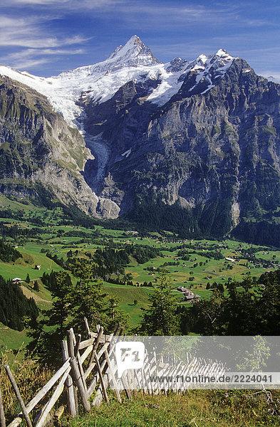 Bern : Finsteraarhorn Bern : Finsteraarhorn