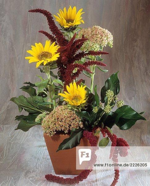 Strauß mit Sonnenblumen   Fetthenne   Fuchsschwanz und Efeu