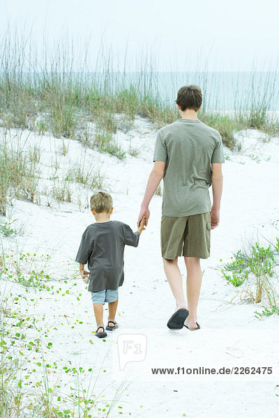Teenage boy and little brother walking at the beach  holding hands  rear view