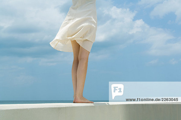 Frau stehend auf Mäuerchen  zerzaust von Breeze  abgeschnitten Rückansicht Frau stehend auf Mäuerchen, zerzaust von Breeze, abgeschnitten Rückansicht