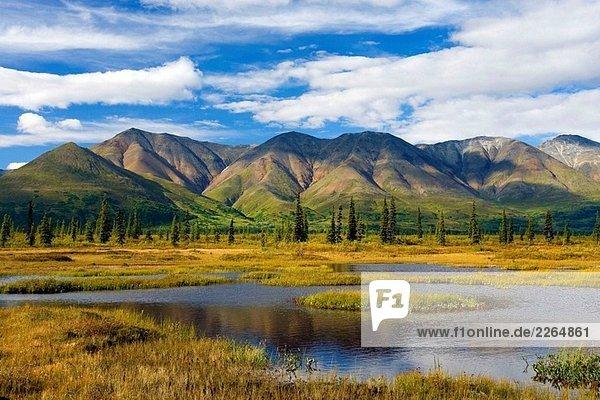 Alaskakette aus Broad Pass  USA Alaskakette aus Broad Pass, USA