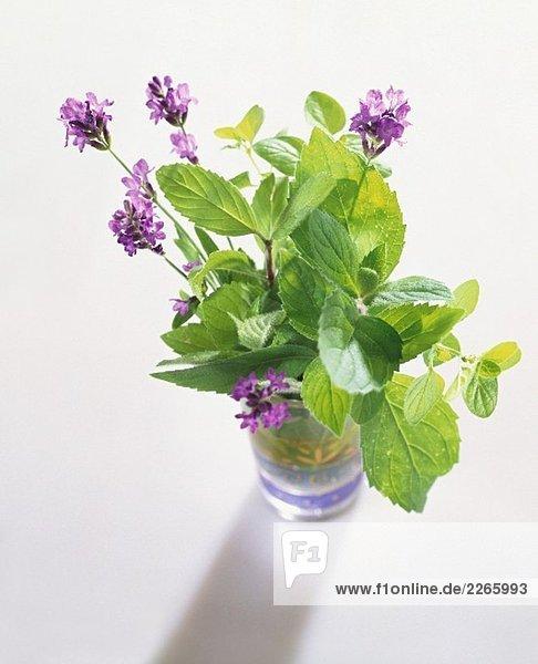 Kräutersträusschen mit Lavendelblüten im Glas