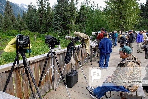Fotografen mit Kamera-Ausrüstung auf Plattform warten auf uns zu tragen zu fotografieren bei Fish Creek Wildlife Beobachtung Website Hyder Alaska AK
