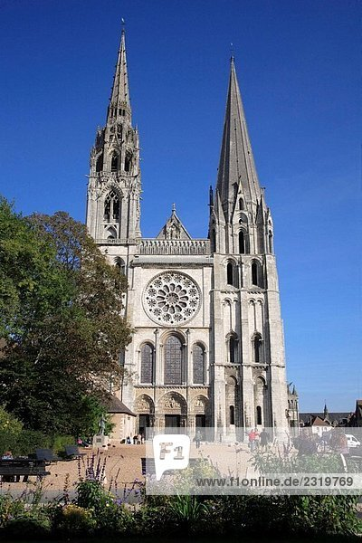 France  Ile_de_France  Chartres  cathedral