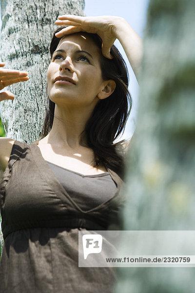 Frau lehnt sich an den Baumstamm  schattiert die Augen  schaut nach oben.