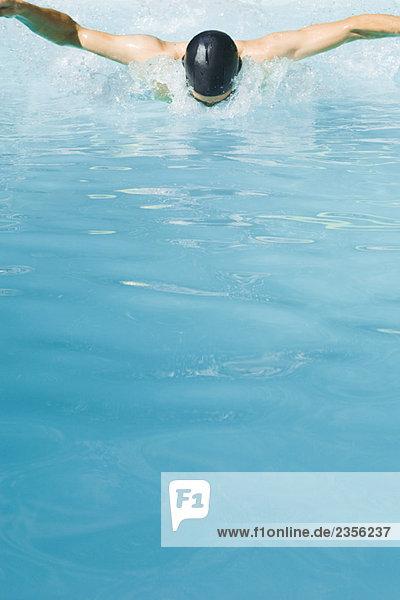 Schmetterling streicheln Schwimmer