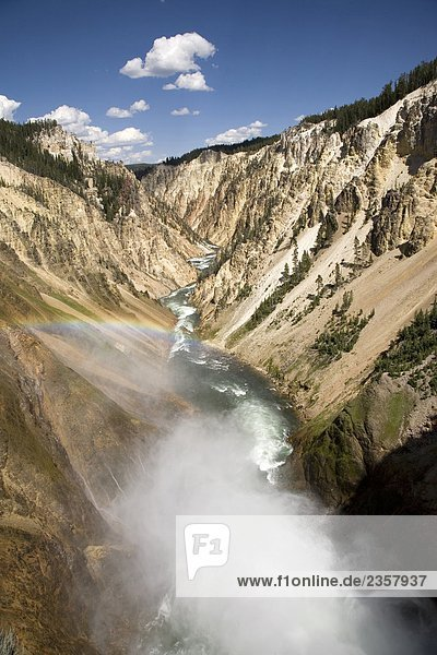 USA  Wyoming  Yellowstone National Park