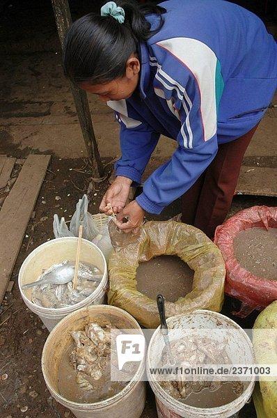 Paksong Laos: eine Frau verkaufen Fisch-Paste auf dem Markt