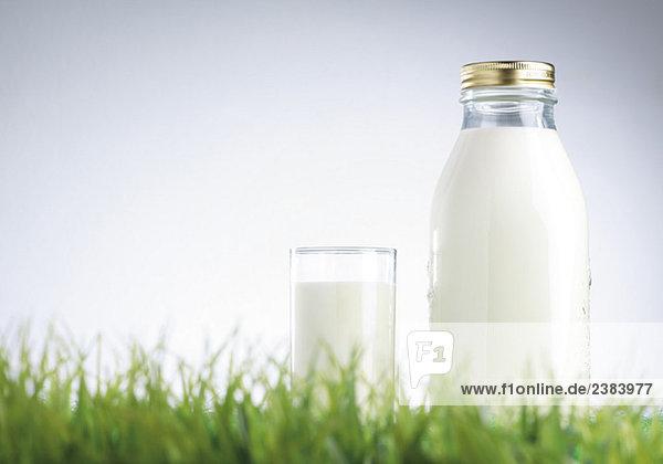 Ein Glas und eine Flasche Milch im Gras