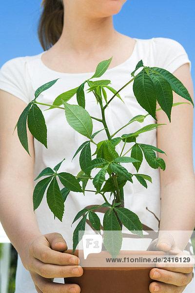 Mädchen mit Topfpflanze
