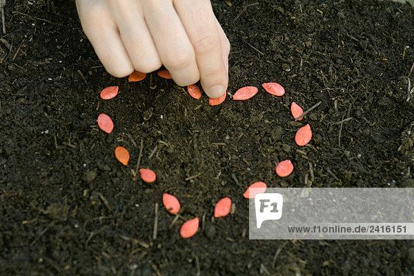 Form Formen Erde Erdreich Boden arrangieren herzförmig Herz Samen