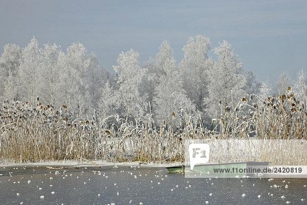Germany  Bavaria  Murnau  Lake in winter