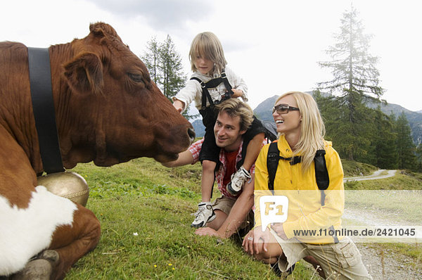 Austria  Salzburger Land  Family looking at cattle