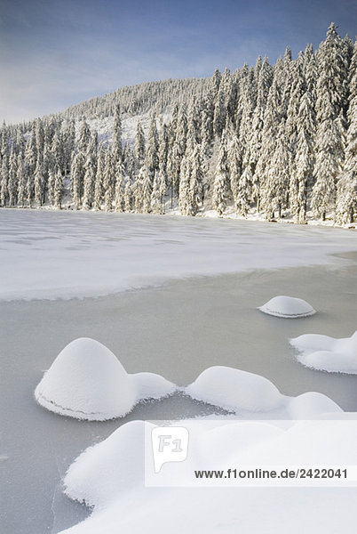 Germany  Black forest  Mummelsee  Winter scenery