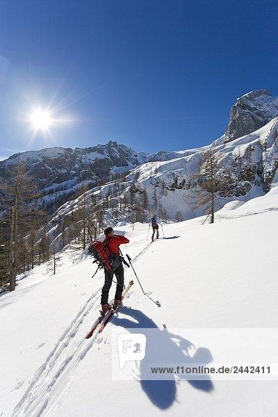 Zwei Skifahrer zu Fuß mit den Skiern auf verschneiten Berg  Knallstein  Tennengebirge  Tennengau  Salzburg  Österreich