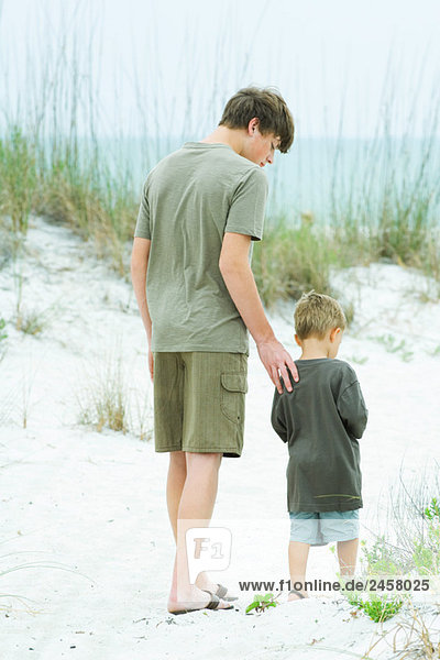Teen boy walking with little brother at the beach  rear view