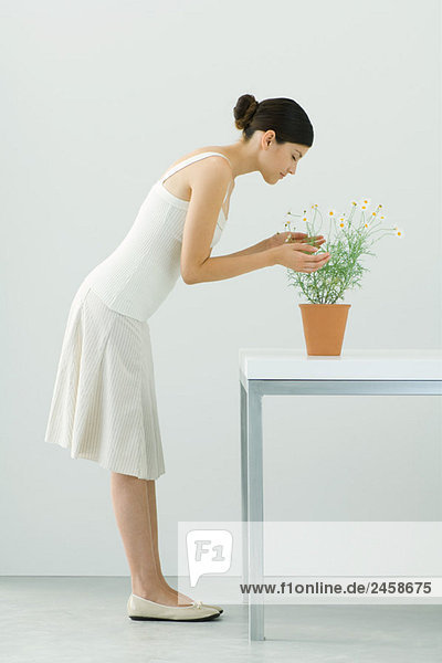 Woman smelling potted chamomile plant  eyes closed  side view