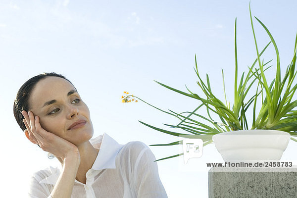 Frau Betrachtung Pflanze Frau Betrachtung Pflanze