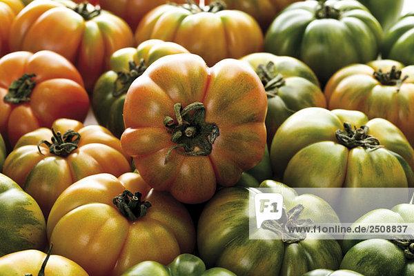 Oxheart Tomaten  Nahaufnahme  Vollbild