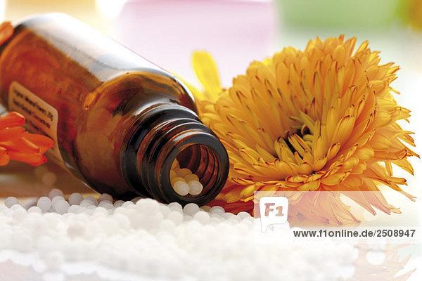 Arzneiflasche mit Pillen vor der Ringelblume ((Calendula officinalis)  Nahaufnahme