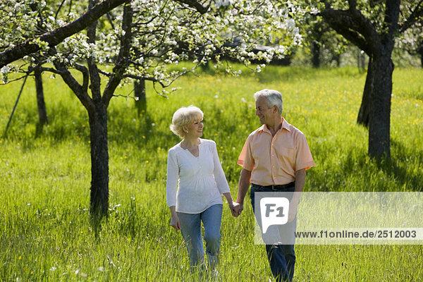 Deutschland  Baden Württemberg  Tübingen  Seniorenpaar beim Spaziergang durchs Feld