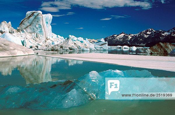 409IB_AE0009_006,Aktion,Alaska,Amerika,Attraktivität