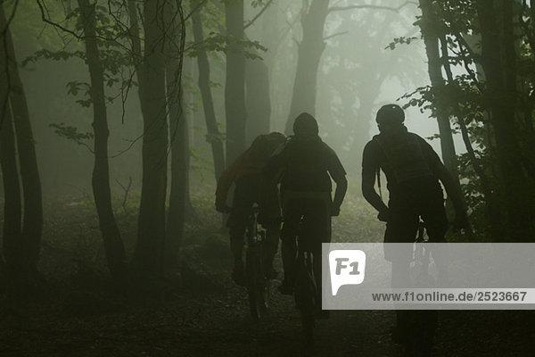 Drei Mountainbikefahrer fahren durch einen dunklen Wald  fully_released