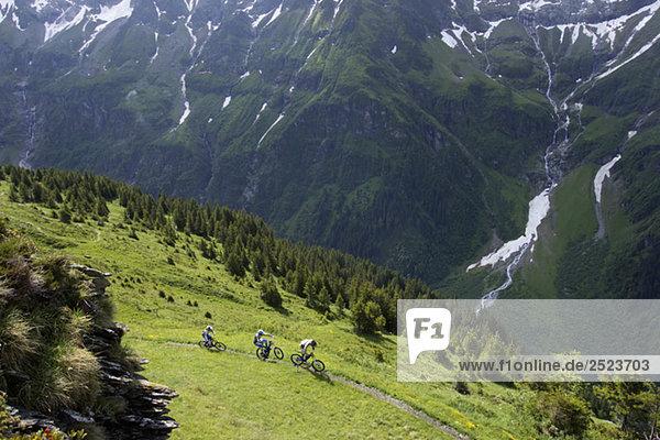 Drei Downhillfahrer auf einem Pfad  fully_released