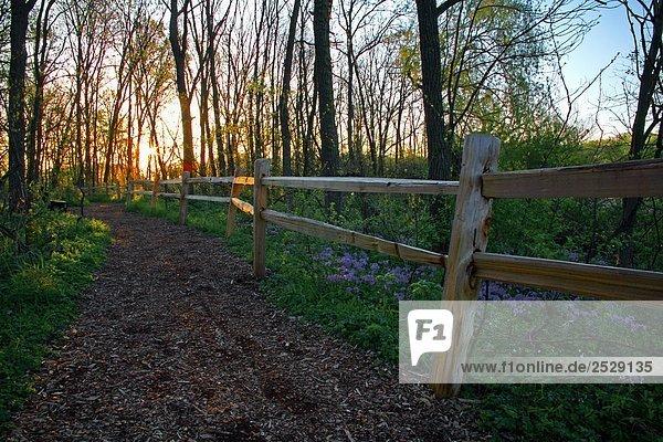 Wanderweg  Whitnall Park (Wisconsin)