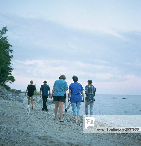 Family Walking along Beach at Lake Winnipeg  Whytwold  Manitoba
