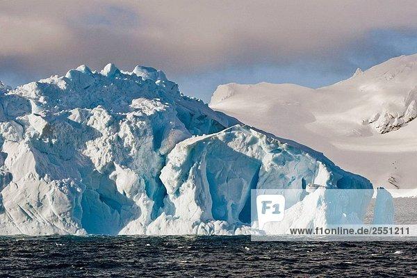 Blick auf Elephant Island  South Shetland Islands  Antarktis.