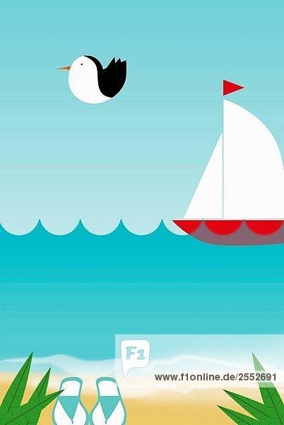 Strand mit Vogel fliegen und ein Segelboot Strand mit Vogel fliegen und ein Segelboot