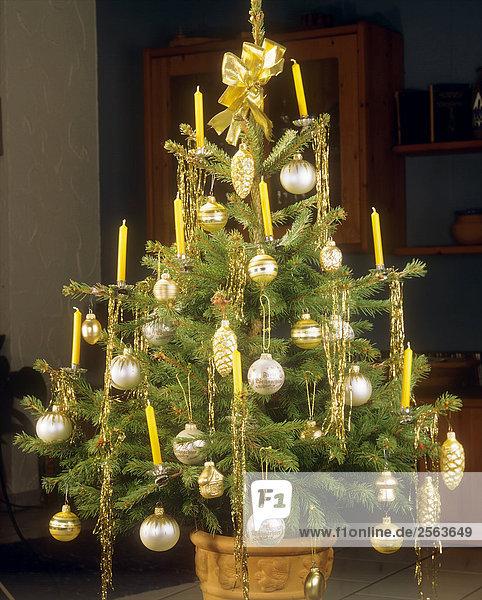 weihnachtsbaum geschm ckt mit kugeln 144555 baeume baum. Black Bedroom Furniture Sets. Home Design Ideas