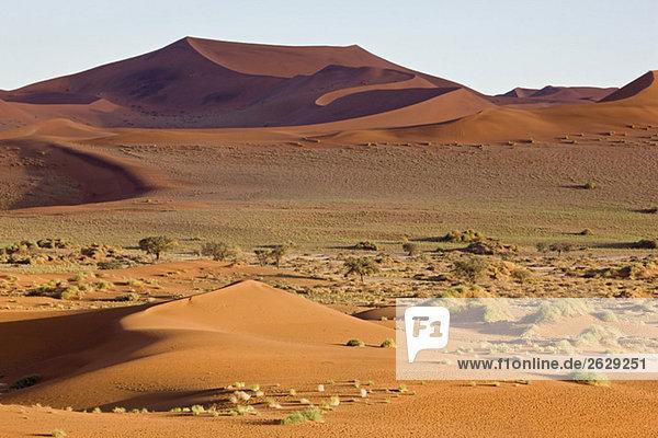 Afrika  Namibia  Sossuvlei  Sanddünen