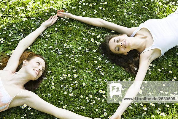 Freunde auf das Gras