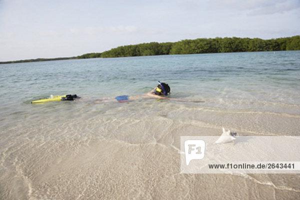 Schnecke Gastropoda nahe Frau Strand Meer schnorcheln Fokus auf den Vordergrund Fokus auf dem Vordergrund
