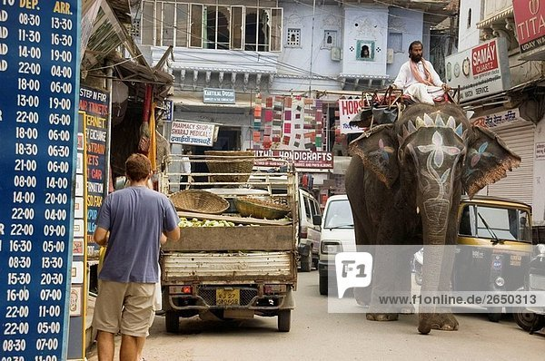 A rider on the back of his elephant  raffles trafficking in Udaipur  Rajastan  India