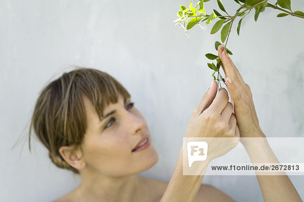 Woman closely examining leaves of plant  looking up