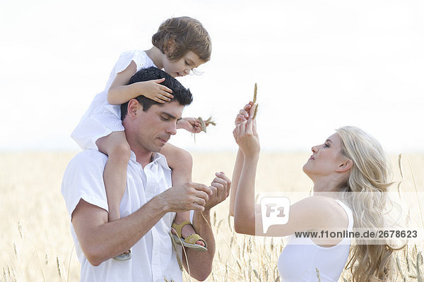 Familie zu Fuß auf dem Feld